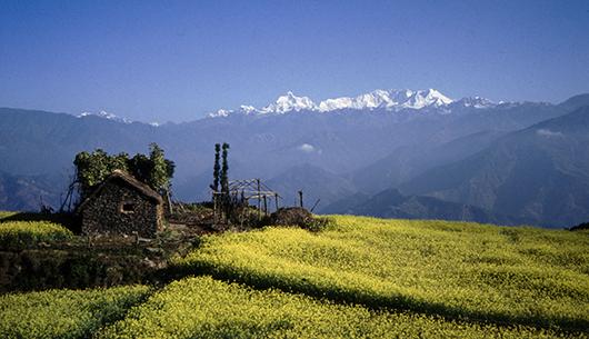 Malownicze widoki na trasie karawany pod Kangchenjungę